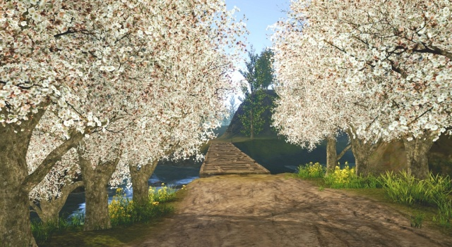 Archeage: Дорога в обе стороны