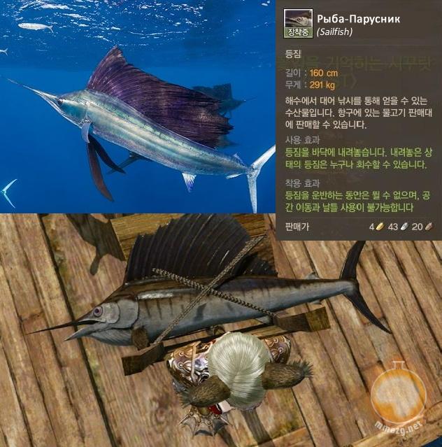 Archeage: AA: Рыба-Парусник