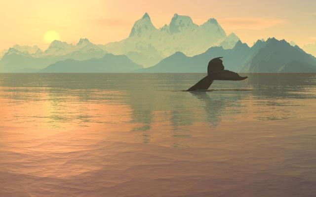 MMO-индустрия: Что движет китами?