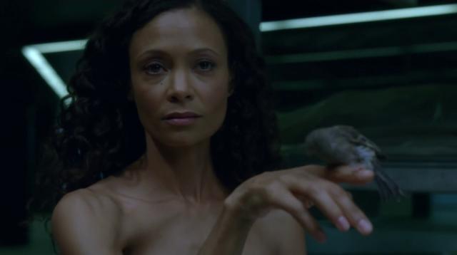 Кино: Westworld: тонкая интерактивная линия
