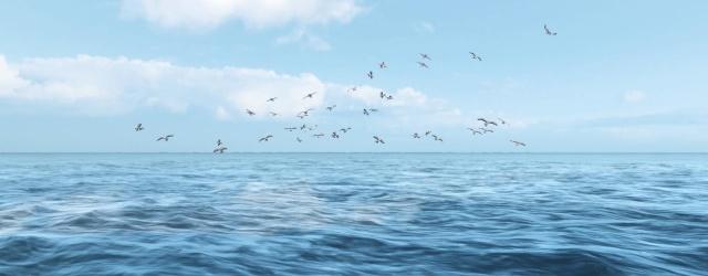 ArcheAge: История о недопонимании и ценах на рыбу