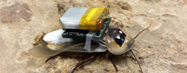 Планета Железяка: Управляемый тараканище