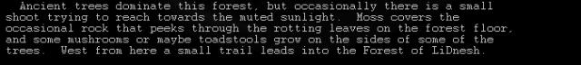 Текстовые игры: Блог им. arykalin: Aardwolf: первый текстовый.