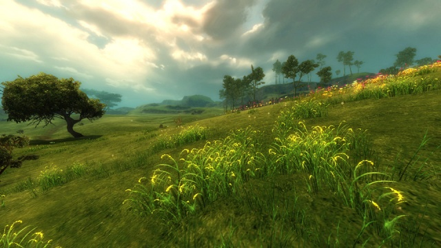 Guild Wars 2: Guil Wars 2 природа