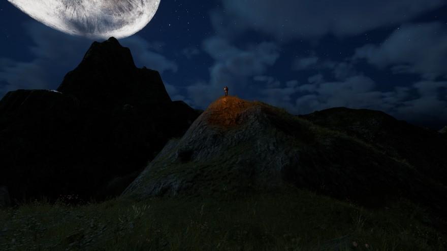 Mortal Online 2: Xornet зажег факел, чтобы я не терял его из виду