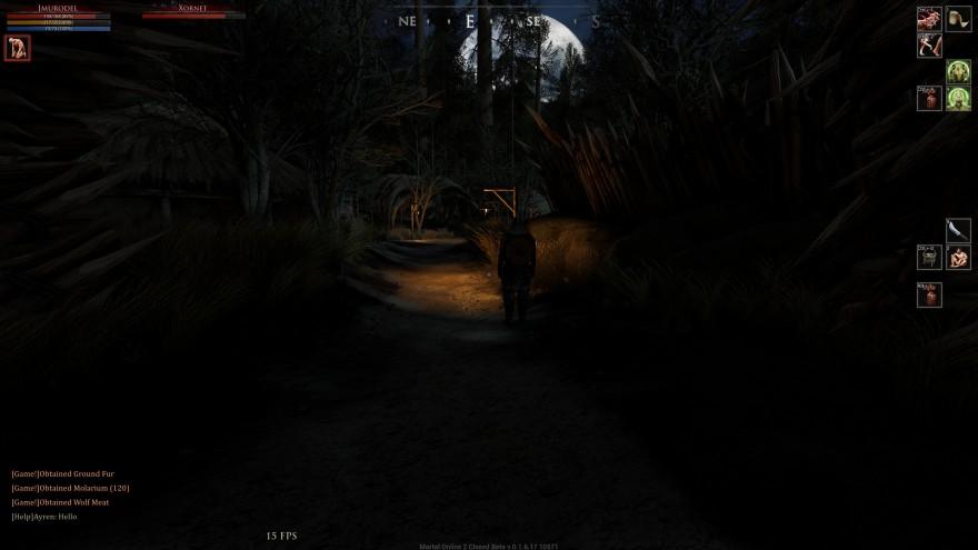 Mortal Online 2: Непередаваемая радость - увидеть в ночи городские огни