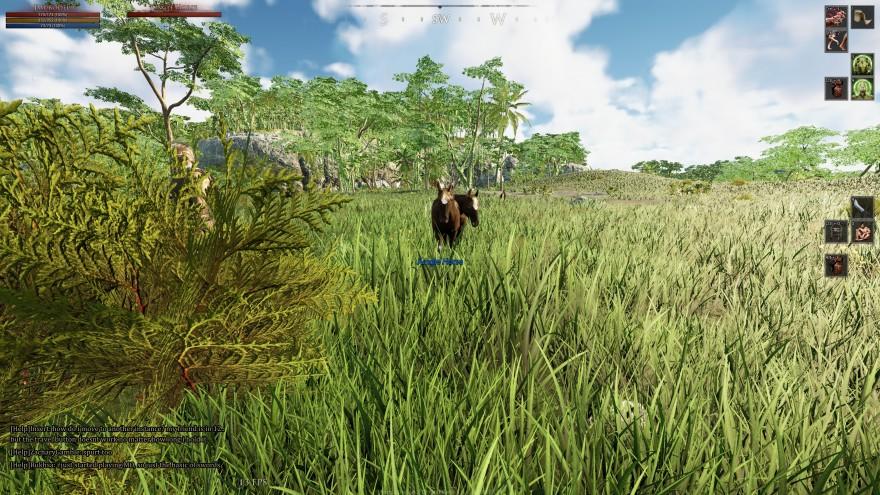 Mortal Online 2: Недоработка игры. Если приручить двух питомцев, они собираются в одну точку