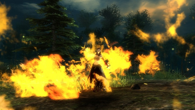 Guild Wars 2: Burn, baby, burn