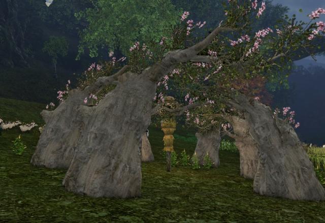 ArcheAge: Путевые заметки: про ятт, закаты и всякое