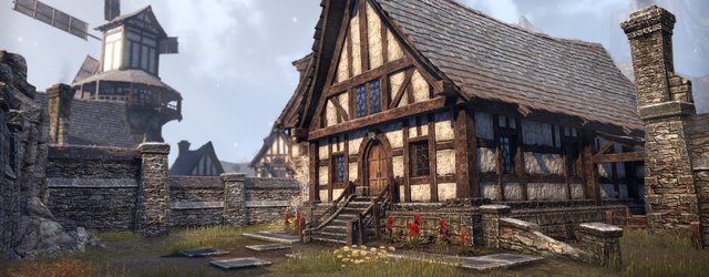 The Elder Scrolls Online: Свой дом в Тамриэле!