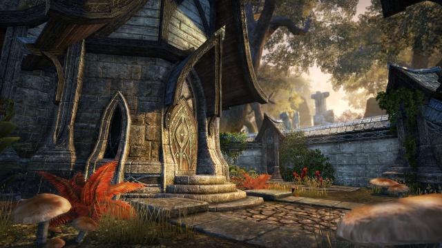 The Elder Scrolls Online: дом2