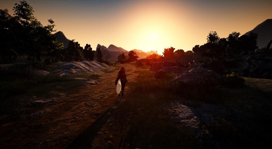 Black Desert: Меч внутри