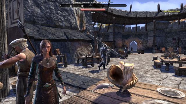The Elder Scrolls Online: TESO - заходим в ту же реку