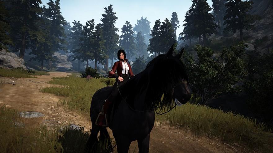 Black Desert: Лошадиные истории: Найт
