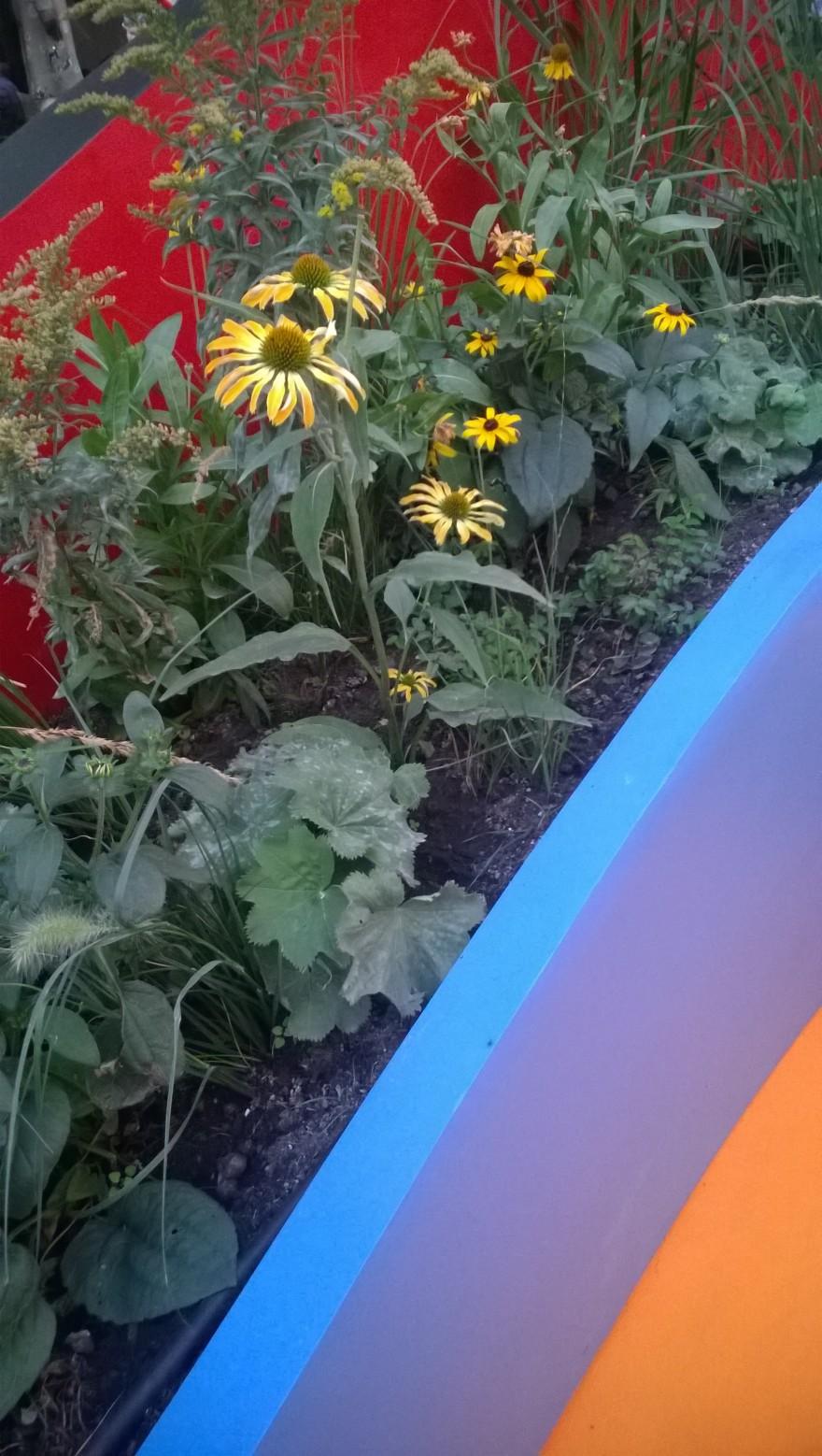 Блог им. Eriniya: Цветочный джем