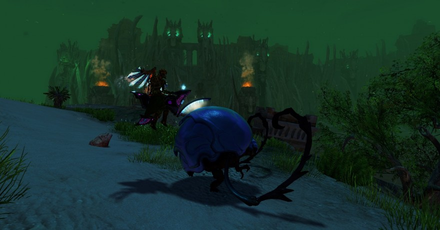 Guild Wars 2: Верхом на жуке-колобке