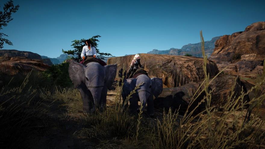 Black Desert: По улицам слона водили