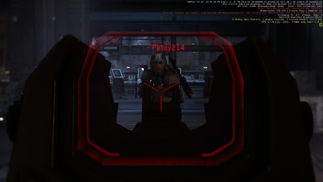 Star Citizen: Интерфейс в стойке прицеливания (ADS)