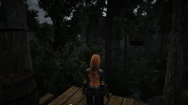 Black Desert — идеальная игра
