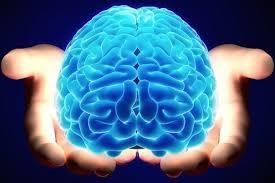 EVE Online: Торговля мозгами