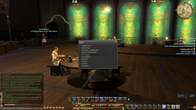 Final Fantasy XIV: Язык, интерфейс, оплата и всё всё всё...