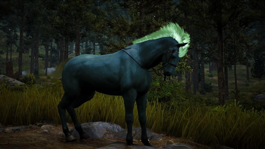 Блог им. ddemch: Что общего у корабля и лошади?