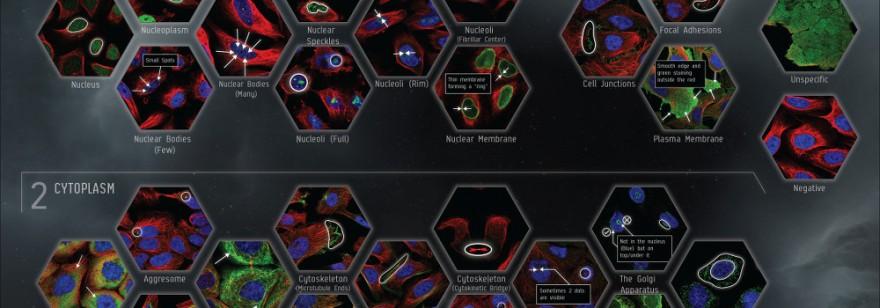 EVE Online: Project Discovery – результаты первого этапа.