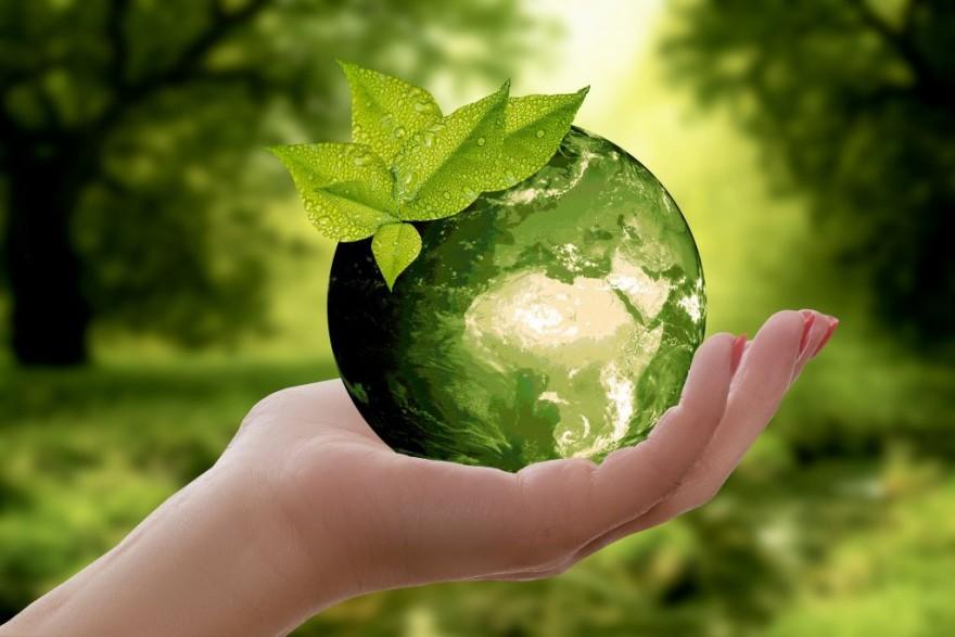 Eco: Супербосс: люди против мира