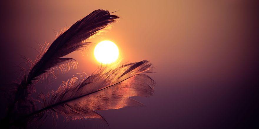 Haven and Hearth: Сильнее, чем ты думаешь
