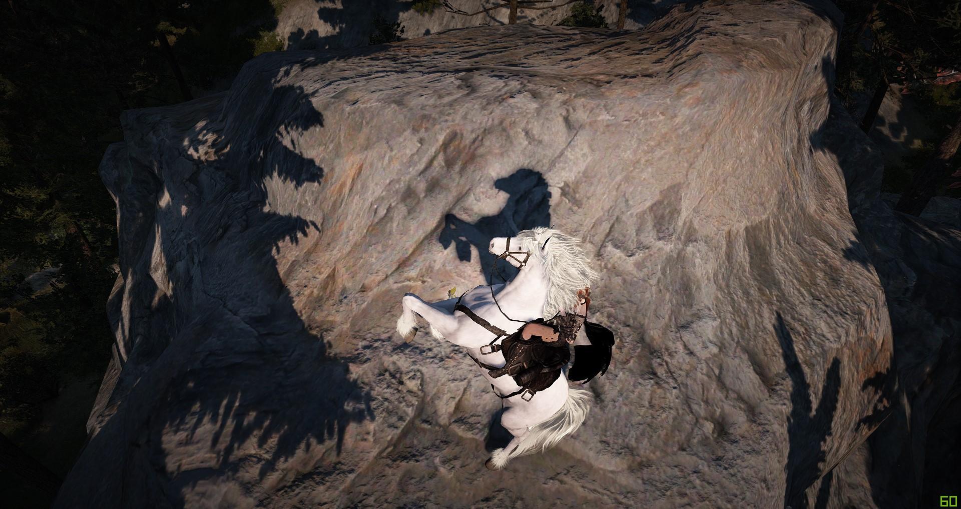 Black Desert: Белый журавль