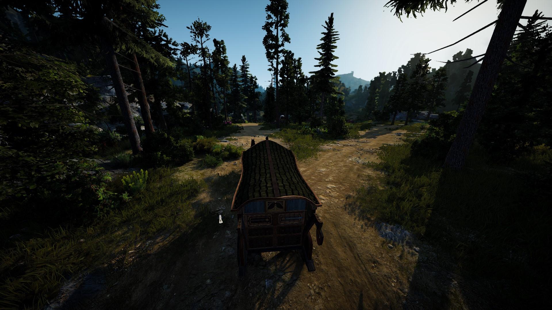 Black Desert: В лес и по дрова