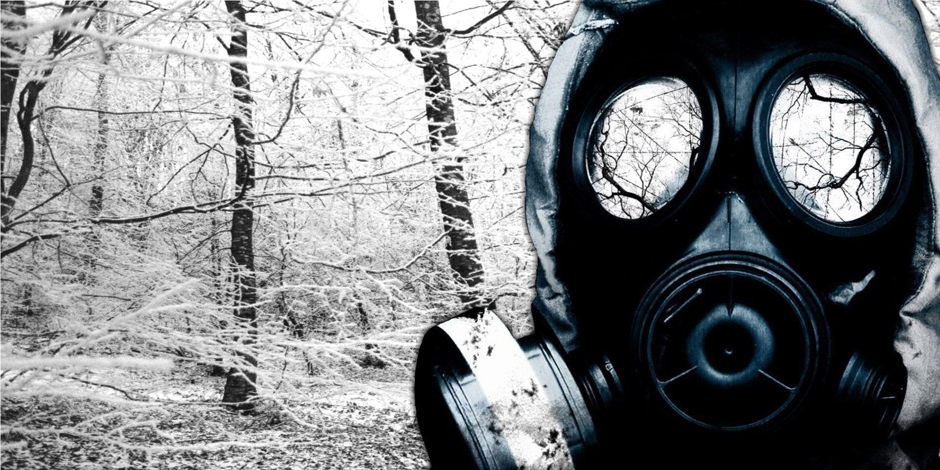 Зеркало для героя: Русскоязычное сообщество и токсичность
