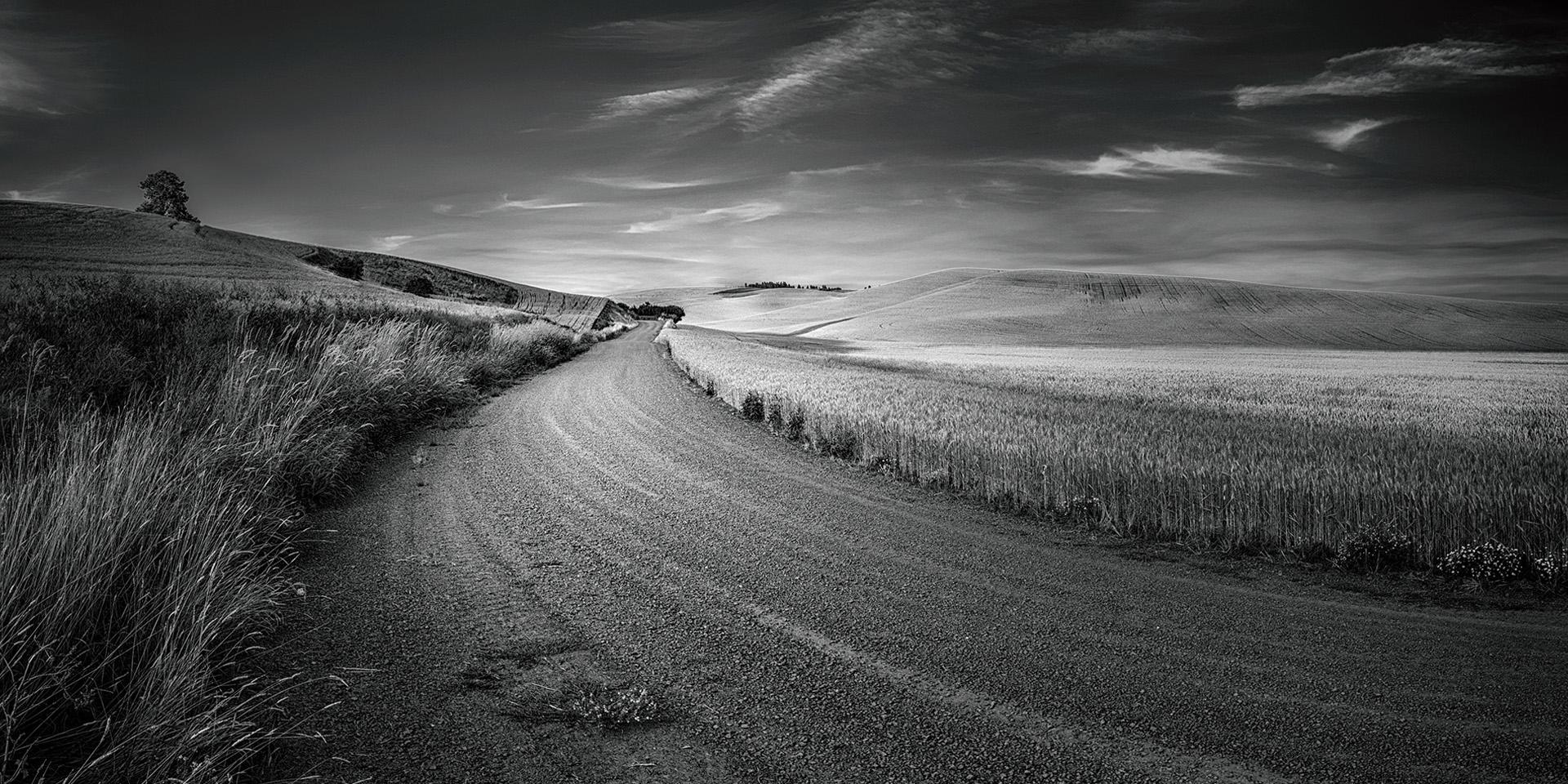 mmozg.net: Долгая дорога к лонгриду